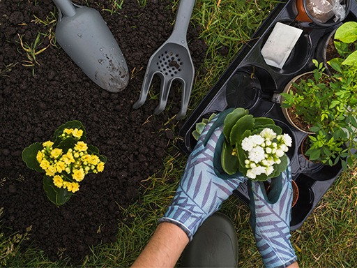 Unichem Planting